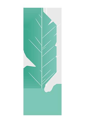 A.I.M Agence